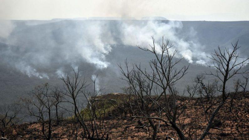 Vista de incendios forestales cerca de Robore, región de Santa Cruz, este de Bolivia el 23 de agosto de 2019. (AIZAR RALDES / AFP / Getty Images)