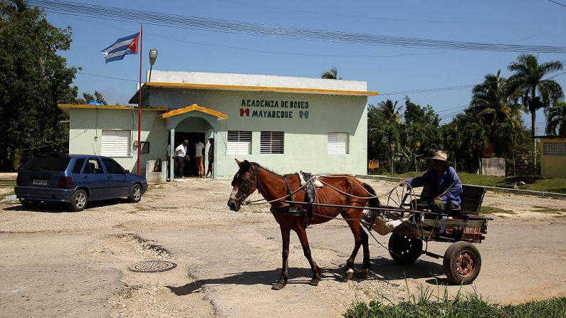 Um cavalo e um buggy passam pela Academia de Boxeo de Mayabeque em 12 de maio de 2015 em Hershey, Cuba. (Ezra Shaw/Getty Images)