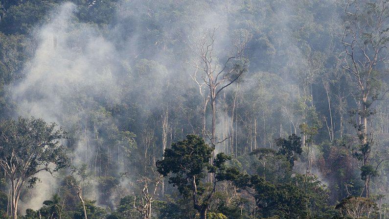 Vista aérea de un sector del Bosque Nacional de Jamanxim en llamas, en el estado amazónico de Pará, en el norte de Brasil, el 29 de noviembre de 2009. (ANTONIO SCORZA/AFP/Getty Images)