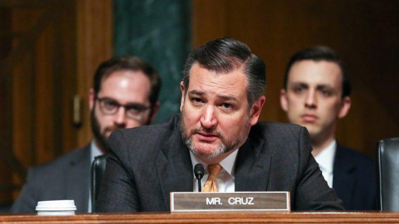 El senador republicano Ted Cruz en una audiencia del Comité Judicial del Senado en Washington el 12 de diciembre de 2018. (Jennifer Zeng/La Gran Época)