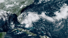 Nuevo ciclón tropical pone en alerta a Florida y el sureste de EEUU, podría formarse en 48 horas