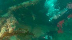 """Revelan estremecedoras imágenes del HMS Terror, un naufragio de 170 años """"congelado en el tiempo"""""""