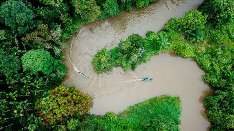 Esta foto aérea tirada de um drone em 12 de janeiro de 2019 mostra os guardas florestais indonésios em barcos (C) patrulhando o ecossistema Leuser perto de Suaq Balimbing, Aceh (Foto CHAIDEER MAHYUDDIN / AFP / Getty Images)