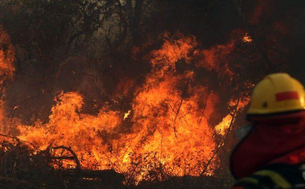 Bombeiro trabalha durante um incêndio florestal perto de Robore, região de Santa Cruz, leste da Bolívia, em 22 de agosto de 2019 (STR / AFP / Getty Images)