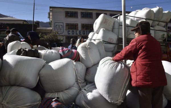 Produtores de coca carregam caminhão com folhas de coca no mercado de La Paz em 23 de agosto de 2018 (AIZAR RALDES / AFP / Getty Images)