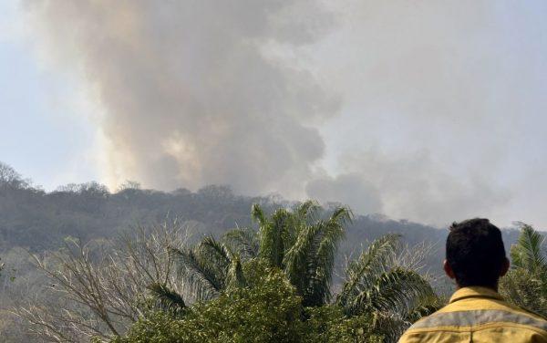 Homem observa incêndio florestal perto de Robore, Santa Cruz, Bolívia, em 24 de agosto de 2019 (AIZAR RALDES / AFP / Getty Images)