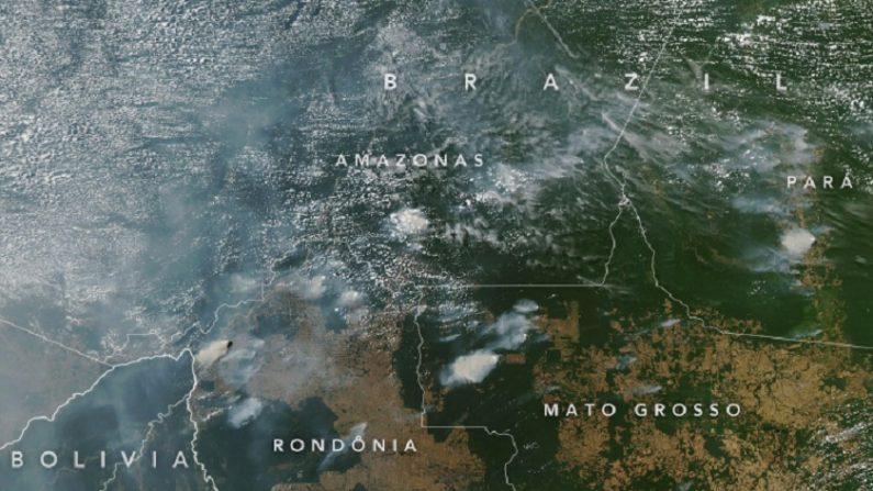"""Fotos de satélites divulgadas pela Nasa desmentem a impressão de """"Amazônia em chamas"""" difundida por ONGs - Foto: Nasa."""