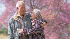 Un jardín lleno de flores fue el amoroso remedio de un japonés para sacar a su esposa de la depresión