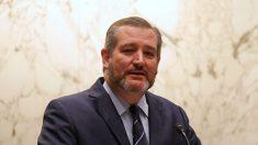El senador Ted Cruz condena la 'bárbarica' práctica de la sustracción forzada de órganos en China