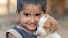 Niño sin hogar cuya única familia es un cachorro capta la atención en redes y así vuelve a la escuela