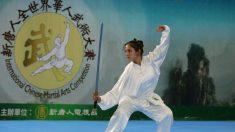 Artistas marciales alcanzan la esencia de la 'virtud de las artes marciales'