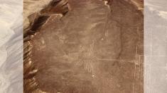 """Las líneas de Nazca podrían ser """"huellas de peregrinaciones"""""""