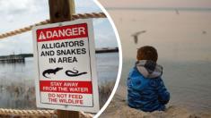 Súplica de bloguera por los padres del niño asesinado por cocodrilos en Disney genera polémica
