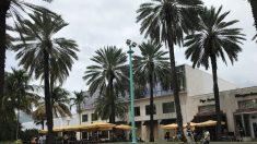 Alivio y vuelta a la normalidad en sur de la Florida tras desvío y debilitamiento de Dorian