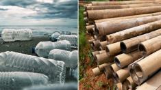 Botellas de bambú sustituyen a las de plástico. ¡Un revolucionario invento de este joven empresario!