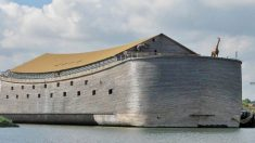 Réplica da Arca de Noé planeja navegar para Israel e depois para o Brasil