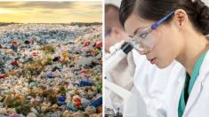 Jóvenes científicas descubren bacteria para convertir desechos plásticos en nuevos y útiles productos