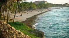 Regime comunista impede que cubanos frequentem praia de Cuba junto com turistas (Vídeo)