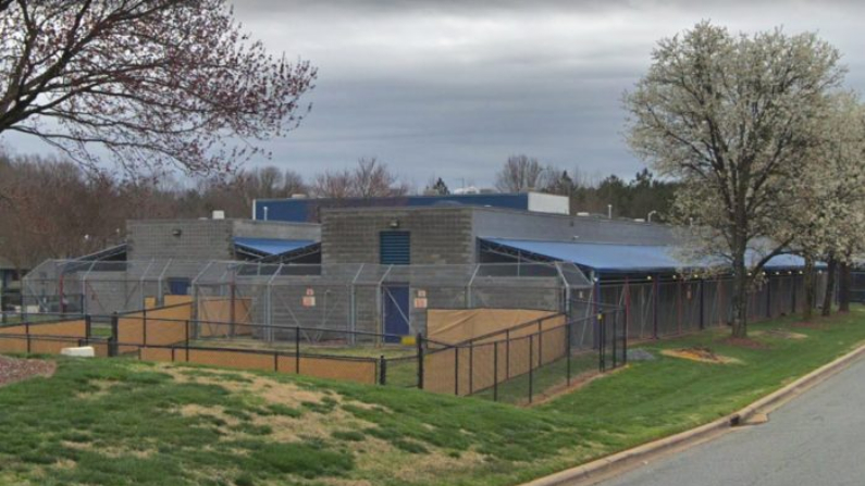 (Google Maps | Charlotte Mecklenburg Animal Care & Control)