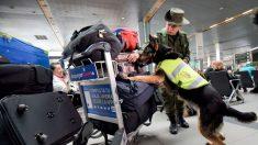 Colombia extrema seguridad en sus aeropuertos por rearme de las FARC