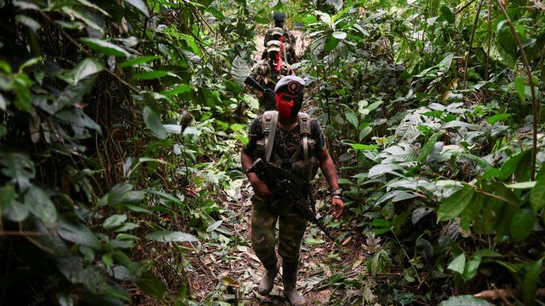Miembros del frente Ernesto Che Guevara, pertenecientes a la guerrilla del Ejército de Liberación Nacional (ELN), patrullan la selva, en el departamento del Chocó, en Colombia, el 23 de mayo de 2019. (RAUL ARBOLEDA/AFP/Getty Images)