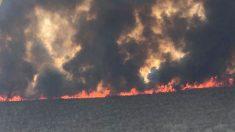 """El freno a los incendios en Bolivia ya solo puede llegar """"del cielo"""""""