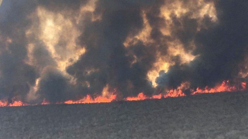Foto publicada por el Gobierno de Santa Cruz que muestra una vista general de los incendios en el área amazónica boliviana de San José de Chiquitos en Santa Cruz, el 9 de septiembre de 2019 en San José de Chiquitos. (STR/AFP/Getty Images)