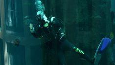 Hombre se ahoga mientras le propone matrimonio a su novia debajo del agua