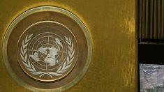 Em carta à ONU, cientistas dizem que não há emergência climática