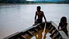 Investimento chinês no rio Amazonas pode comprometer todo o ecossistema, dizem especialistas