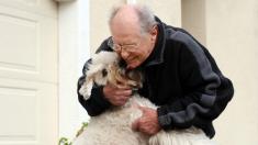Foto de dueño desolado por la muerte de su perrito que vivió con él 16 años rompe corazones en redes