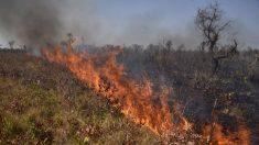 Paraguai considera controlados incêndios na fronteira com Bolívia e Brasil