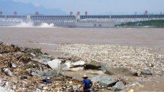 Los ríos de China son la principal fuente de plástico que entra en los océanos