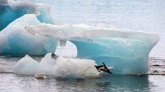 Enormes formaciones terrestres bajo la Antártida podrían estar derritiendo sus hielos