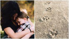 Menino de 2 anos com autismo desaparece e a polícia o encontra graças às pegadas de seu cachorro
