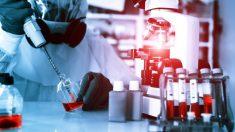 Explota laboratorio ruso conocido por albergar virus asesinos: Ébola, gripe porcina y viruela