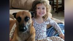 Dueño mortificado acusa a United Airlines por la muerte de su perrito, era un miembro de la familia