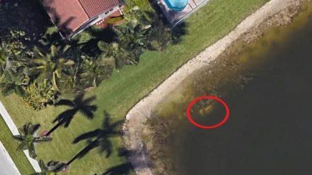 Encuentran en Google Earth los restos de un hombre desaparecido hace 20 años en Florida