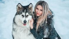 Lobo gigante que no deja de lamer a una voluntaria del santuario muestra su lado cariñoso en un video