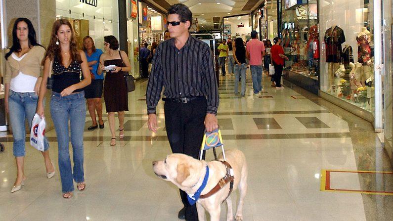 Imagen de archivo de un hombre ciego cambinando con su perro guía. (Wikimedia commons)