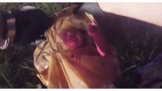 Vídeo chocante: polícia abre sacola e encontra bebê chorando preso ao cordão umbilical