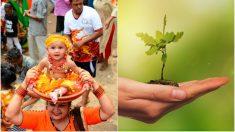 Plantan 111 árboles por cada beba nacida en aldea India y evitan la muerte de muchas niñas por la dote