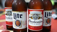 Várias marcas de cervejas contêm herbicida usado para matar ervas daninhas, informa estudo