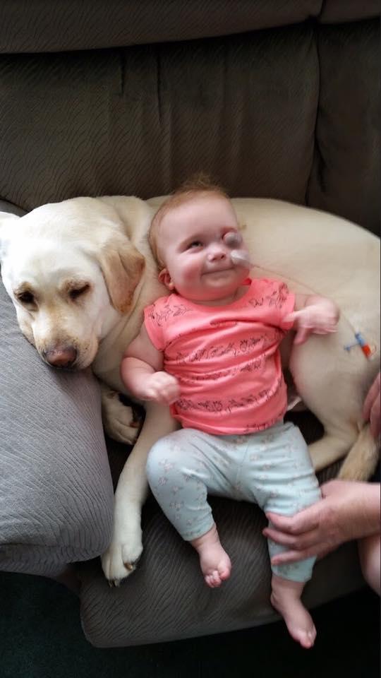 Eva disfruta de un poco de tiempo con el perro en casa de su proveedor de cuidado infantil en el hogar.