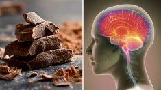 Comer chocolate es bueno para el cerebro y otros órganos corporales según los científicos