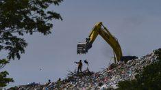 Hombre en Florida revuelve diez toneladas de basura para encontrar el anillo de compromiso de su mujer