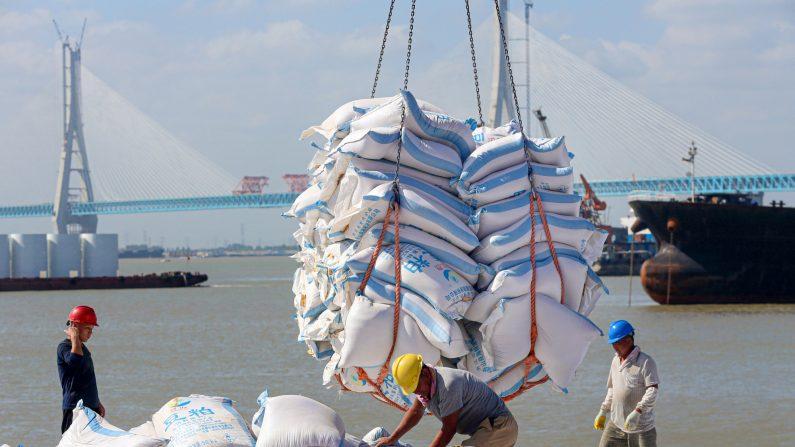 Trabajadores transfieren productos hechos con soja en un puerto de Nantong, en la provincia oriental china de Jiangsu, el 19 de septiembre de 2019. (Foto de STR / AFP) / China OUT (STR/AFP/Getty Images)