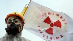 Tifón Hagibis arrastra bolsas con desechos nucleares de Fukushima hacia un río, revela informe