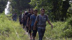 MSF reporta aumento de secuestros y violencia extrema contra migrantes en la frontera Sur de México