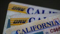 Mayoría de estados se niegan a compartir información de ciudadanía con agencias de EE.UU., según informe